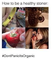 Meme Stoner - 25 best memes about stoner meme stoner memes