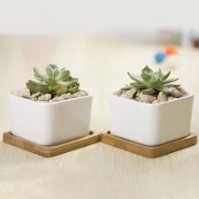 compare prices on flower pot glazed online shopping buy low price