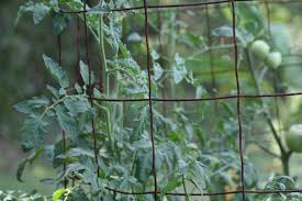 how to make the world u0027s best tomato cages youtube