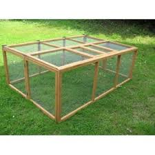 Indoor Hutches New Owner Advice What To Buy Feed And Everything Else