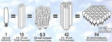 fluorescent light bulbs for growing weed compact fluorescent cfl grow lights