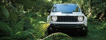 jeep van 2015 2015 jeep renegade vehicle identification number vin