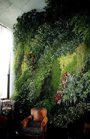 223 best vertical gardens images on pinterest vertical gardens