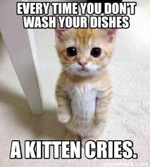 Dishes Meme - meme creator every time you don t wash your dishes a kitten cries