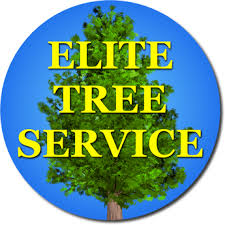 elite tree service portland oregon testimonials ratings and reviews