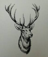 the 25 best stag tattoo design ideas on pinterest geometric