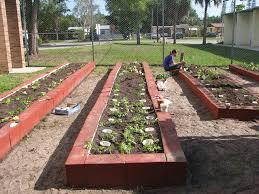 Florida Vegetable Gardening Guide by Home Vegetable Garden Ideas 10880