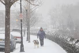 Worst Snowstorm In History by 13 Photos And One Tweet That Show How Underwhelming Nyc U0027s Snow