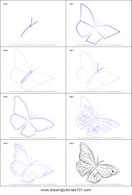 drawing a butterfly by how to draw a monarch butterfly
