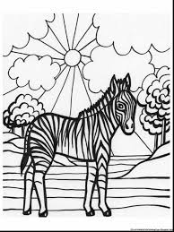remarkable zebra wild animal coloring pages with zebra coloring