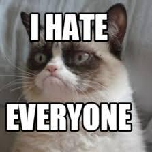 I Hate Everyone Meme - i hate everyone meme 28 images i hate everyone memes com
