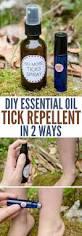 best 25 tick control ideas on pinterest a tick tick bug and