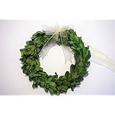preserved boxwood wreath preserved boxwood wreath 8 in by tradingsmith home