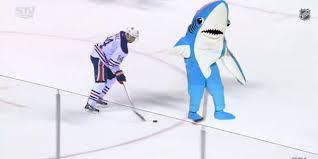San Jose Sharks Meme - san jose sharks can t escape leftshark meme democratic underground