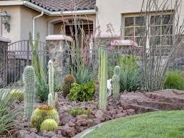 best cactus garden ideas inside cactus landscaping u2014 bistrodre