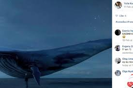 what is the blue whale challenge how many deaths has the