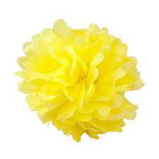Yellow Pom Pom Flowers - assorted tropical paper tissue pom poms set of 8 color pack small