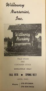 willoway nurseries inc the midwest u0027s premier wholesale grower