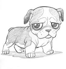 drawn baby animal cute dog pencil and in color drawn baby animal