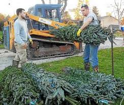 christmas tree farm in painesville township blends business