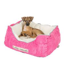 Kitten Bed Little Rascals Sweet Dreams Square Puppy And Kitten Bed Pink Web
