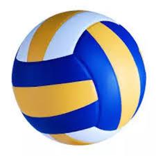 Keranjang Bola Volly bola voli nc 556 kuning membeli jualan bola voli