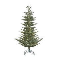 blue spruce tree wayfair