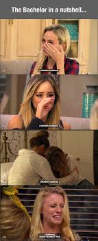The Bachelor Memes - the bachelor freak n hillarious pinterest humor laughter and