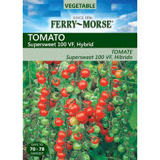miracle gro groables globe tomato seed pod 140031 the home depot