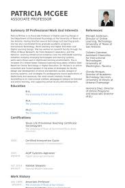 Steward Resume Sample by Associate Professor Resume Samples Visualcv Resume Samples Database