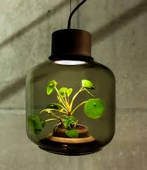 plant lamps miniature gardening without sunlight recoil offgrid