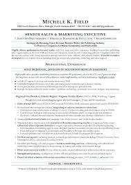 best resume writing service houston executive resume writing resume writing service executive resume
