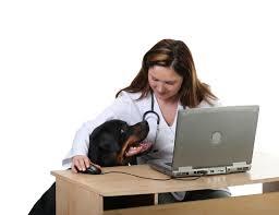 6 veterinary trends you need to know veterinary marketing blog