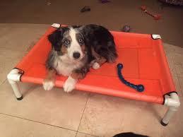 Pvc Pipe Dog Bed Dog Bed Cat Bed Mesh Pvc Pipe Dog Hammock Dog Bedding