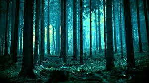 Deep Forest Green Deep Deep Forest Pandaprime Chillstep Youtube