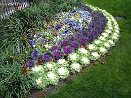 Backyard Flower Bed Ideas Designing Flower Beds Flower Bed Ideas For Sun Pictures