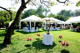 unique garden wedding decorations with cheap and creative garden