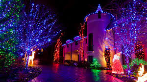purple christmas lights is this year the year to switch to led christmas lights inter