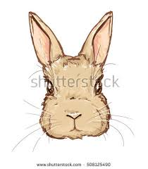 illustration cute bunny rabbit stock illustration 416732995