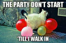 Birthday Party Memes - 40 most funny party meme pictures and photos
