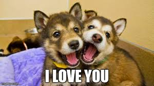 Cute I Love You Meme - i love you imgflip