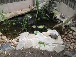 Backyard Small Pond Ideas 25 Unique Turtle Pond Ideas On Pinterest Diy Pond Koi Fish