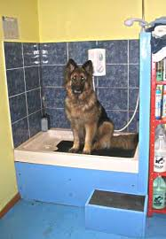 groomers bbs bathtubs which to use