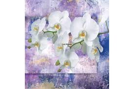 mural white orchids on wall art in purple wall mural white orchids on wall art in purple