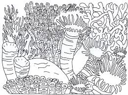 coral reef coloring pages bestofcoloring com