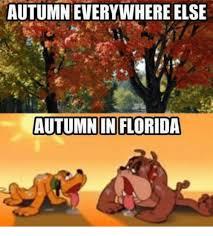 Autumn Memes - autumn everywhere else autumn in florida meme on me me