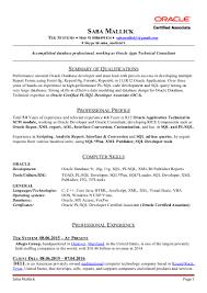 sap bi resume sample sql developer resume sample sample resume and free resume templates sql developer resume sample oracle database administrator sample resume financial sap security resumes with sle sql