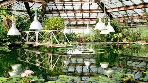 Bermuda Botanical Gardens Botanical Gardens In St Petersburg Russia Lonely Planet