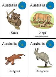 australia various worksheets australia pinterest australian