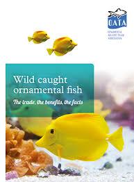 new report reveals benefits of fish pet aquatic focus